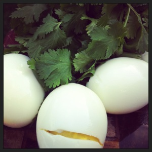 eggs and cilantro